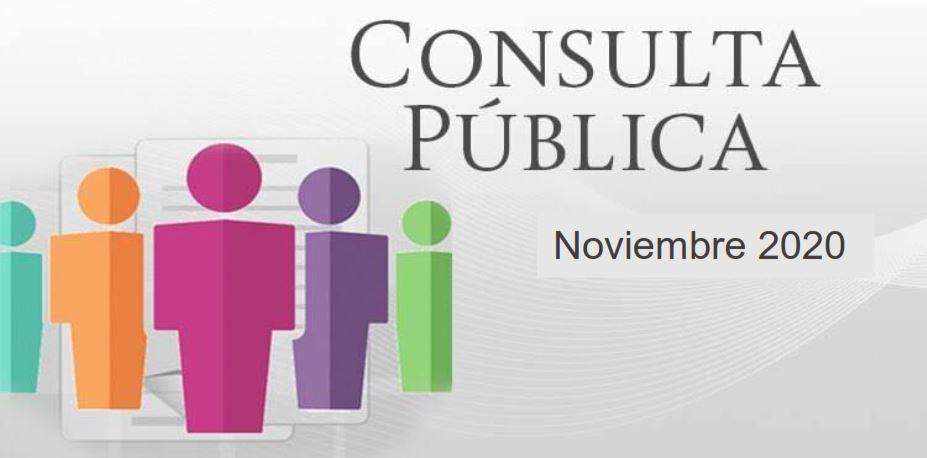 consultaPublica2020